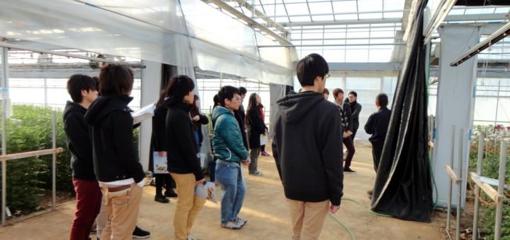 就業体験講座-イシグロ農材株式会社(2015/02/02)
