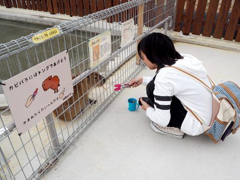 のんほいパーク盛り上げ隊!の活動が朝日新聞で紹介されました(三輪・山口プロジェクト)